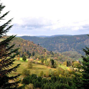 Les Vosges l'automne permettent d'admirer une large gamme de couleurs lors de belles randonnées