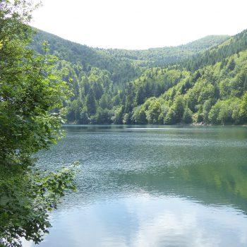 Lac du grand ballon dans le massif des Vosges